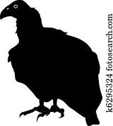 Clipart of Condor condor - Search Clip Art, Illustration ...