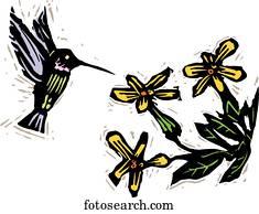 Pollenation, 2
