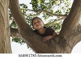 Baum klettern stock photo bilder baum klettern - Baum auf spanisch ...