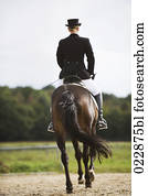 rear view of female dressage rider exercising