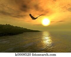 Eagle Coast