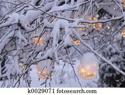 Weihnachtsbilder Mit Licht.Weihnachtsbilder Licht Fotos 1000 Weihnachtsbilder Licht Stock