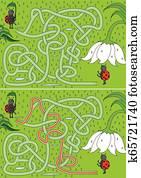Ladybugs maze