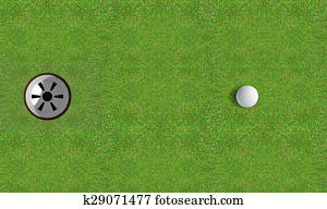 Golf Hole With Ball Approaching