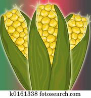 Kwanza corn close up