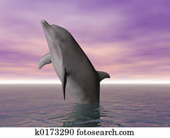 Breeching Dolphin