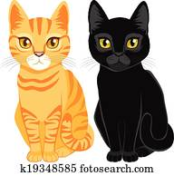 Tabby And Black Cats