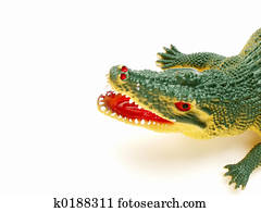 crocodile/alligator?
