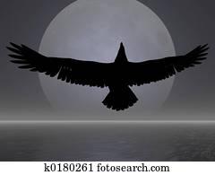 Moon Eagle