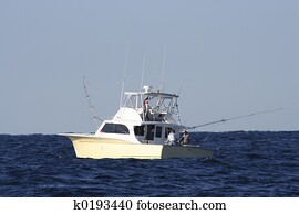 Sport Fish Boat