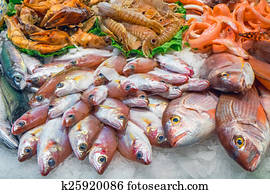 Tasty fish and seafood