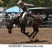 Bucking Horser