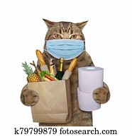 Cat in surgical mask with groceries