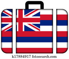 Suitcase with Hawaii Flag