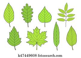 hand drawn set of green leaves