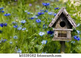 Birdhouse & Flowers