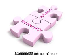 Pregnancy planning puzzle pieces