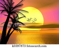 Colorful Tropical sunset, sunrise