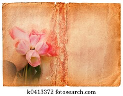 grunge book page with pink tulips
