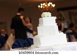 Bride Groom Cake