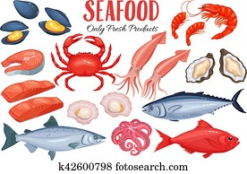 Seafood in cartoon style.