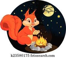 Squirrel campfire