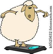 Dieting sheep