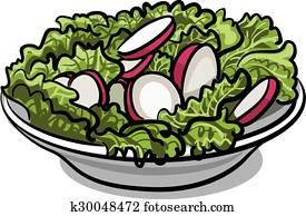 salad with fresh radish and lettuce