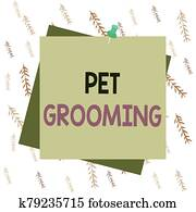 Handwriting text writing Pet Grooming. Concept meaning hygienic care and enhancing the appearance of the pets Reminder color background thumbtack tack memo attached office pin square.