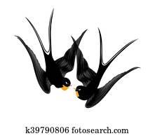Kiss swallows
