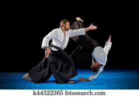 Martial arts fighters isolated