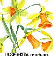 Watercolor yellow narcissus flower. Floral botanical flower. Seamless background pattern.