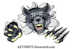 Wolf claws break out