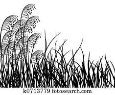 Meadow grass, vector