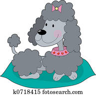 Poodle on a cushion