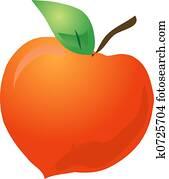 Peach sketch