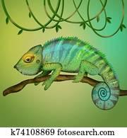 illustration of chameleon