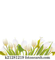 Spring flowers backround with text lettering.