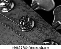 Headstock bass  Picture | k4154184 | Fotosearch