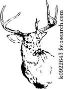 Deer Reindeer Illustration