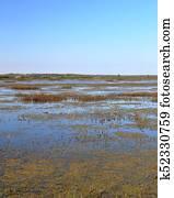 Marsh at a national wildlife refuge