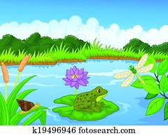 Cartoon a frog at the river