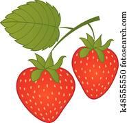 Vector Strawberries. Vector Strawberry.