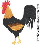 France Rooster Illustration