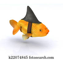 fake shark fin on little redfish