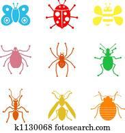 bug shapes