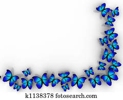Butterfly border