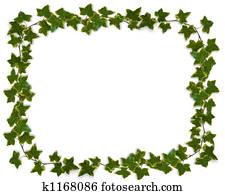 Ivy Border or Frame