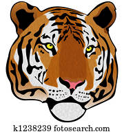 Siberian Tiger Illustration Isolate