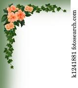Ivy, Hibiscus and Roses corner